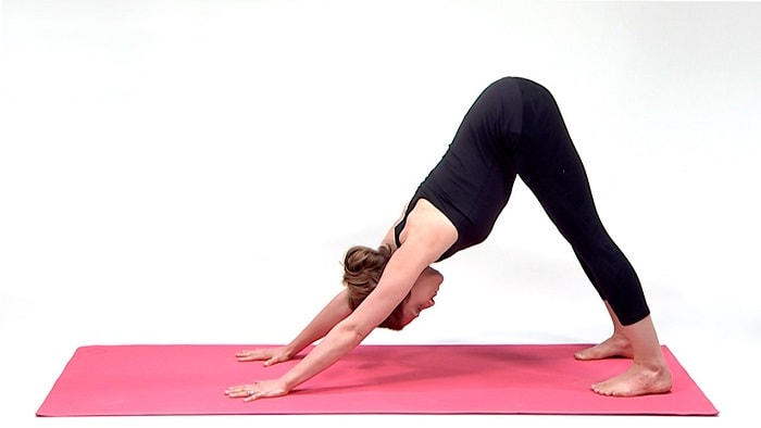 Downward Dog Yoga